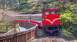 阿里山小火車觀日出2日
