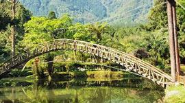 來去鹿谷 茶間散步 杉林溪山林二日遊